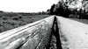 Down the path (frankdorgathen) Tags: schwarzweis schwarzweiss blackandwhite monochrome wood holz perspective perspektive wideangle weitwinkel sony1018mm alpha6000