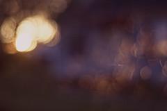 a bokeh sunset (Sarah Rausch) Tags: bokeh sunset 50mm 18 nikon lensflare