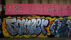 IMGP9806 Are you Happy ? (Claudio e Lucia Images around the world) Tags: murales graffiti streetart milano vialemonza ferrovia via pontano milanese pentax pentaxk3ii sigma sigma1020 pittura face faccia murale art pink violet areyouhappy happy question