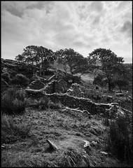 once upon a time (nahlinse) Tags: film analog fujineopanacros fuji acros landscape ireland donegal abandoned farm house blackandwhite travel