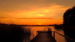 Smell of Reeds... (Zbyszek Walkiewicz) Tags: nikon nature landscape sunrise coth5