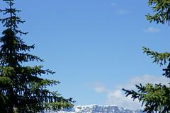 OpalHiills00031 (jahNorr) Tags: summertrip 2012 canadaalbertajaspernationalparkopalhills