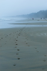 Steps in the sand (cdnfish) Tags: tofinobc uclueletbc longbeach vancouverisland bc britishcolumbia canada water pacific sand beach fog trail tide sony sonya7m2 a7m2 landscape landscapephotography