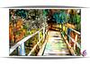 Ricketybridge (PaulO Classic. ©) Tags: canon eos450d capetown glencairn picmonkey photoshop spe smartphotoeditor deepdream