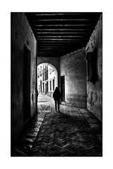 Callejon (mgarciac1965) Tags: bn blackandwhite city street art light people sevilla seville seviglia andalucía andalucia andalusia españa spain espagne nikond5200 nikon