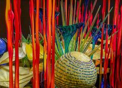 Bright underworld (Adaptabilly) Tags: fantasy glass usa washington art closeup reflection translucency seattle light sculpture chihuly macro travel indoors gallery lumixgx7 unitedstates us