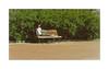 In the park (Alexandr Voievodin) Tags: park bench bushes foliage girl nikon1v1