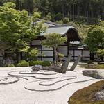 Honryu-tei Garden 奔龍庭の新緑 thumbnail