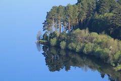 Pontsticill reservoir (OutdoorMonkey) Tags: pontsticill reservoir water lake calm serene tree vegetation nature trees reflection morning sunshine wales welsh merthyrtydfil