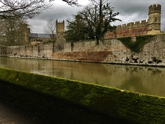 Wall of Moss! (springblossom3) Tags: wall moss nature river wells somerset bishops palace tourism history moat ruin tower