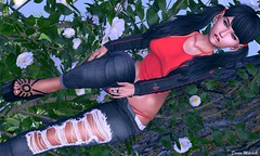 ✺✺ 565 ✺✺ (*Star Girl Fashion*) Tags: adorsy colivatibeauty irwaposes limerence moda arise blush cosmopolitan equal10 sanarae event avatar bento secondlife sl secondlifefashion secondlifephotography photography photographyblog styling meshhair hair