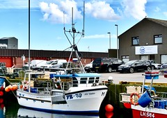 FR39 New Venture - Fraserburgh Harbour Scotland - 19/4/2018 (DanoAberdeen) Tags: newventure fr39 fr39newventure danoaberdeen 2018 fraserburgh harbour fishermen trawlermen fish salmon scallops haddock cod mackrel trawlers fishingboat shellfish turbot hake scotland scottish northeastscotland scottishhighlands bonnyscotland seafarers berth seaport docks candid amateur nikon thebrooch brooch fraserburghscotland tug boat vessel ship autumn summer winter spring bluesky clouds aberdeen aberdeenshire grampian scottishwater fishinglife shipspotting broch thebroch