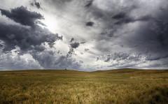 Interlude Sky (Keith Midson) Tags: sky oatlands tasmania field rural australia agriculture grass clouds cloud