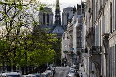 _DSC1407 (arseni.mourzenko) Tags: notredamedeparis paris architecture îledefrance france fr