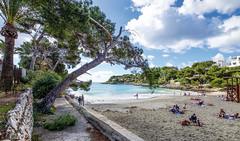 Mallorca20180412-07973 (franky1st) Tags: spanien mallorca palma insel travel spring balearen urlaub reise