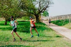 trail_delle_rocche_roero_2018_0364 (Ecomuseo delle Rocche del Roero) Tags: aprile ecomuseodellerocche edizione montà rocche trail uisp trailrunning roero