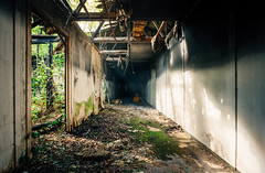 burned and decayed (Nils Grudzielski) Tags: lostplaces abandonedplaces derelict decay