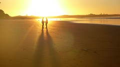 Silhouettes & Shadows 02 (stefans_box) Tags: silhouette shadow cartersbeach westport newzealand neuseeland polynesien beach strand sunset sundown sonnenuntergang schatten scherenschnitt abendstimmung abend gegenlicht
