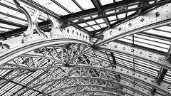 girders (Francis Mansell) Tags: structure greenhouse glasshouse girder building architecture monochrome blackwhite temperatehouse kewgardens kew royalbotanicgardenskew roof niksilverefexpro2 ironwork glass pane