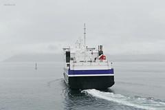 """""""Lødingen"""" (OlafHorsevik) Tags: ferge ferje ferga ferja ferry torghattennord thn lødingen bognes"""