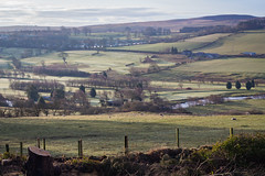 Coquet (music_man800) Tags: river coquet coquetdale northumberland county uk united kingdom borders rothbury fields walls fence scenery landscape early morning natural light lighting canon 700d adobe lightroom creative edit outdoors valley landform nature cloudy misty weather beautiful beauty trees april spring chilly cold atmospheric