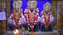 NarNarayan Dev Sandhya Darshan on Sun 29 Apr 2018 (bhujmandir) Tags: narnarayan dev nar narayan hari krushna krishna lord maharaj swaminarayan bhagvan bhagwan bhuj mandir temple daily darshan swami sandhya