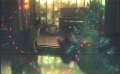 (Lolita Storm) Tags: error analog film pentax doble expo