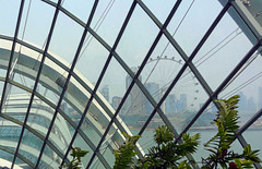 Looking over at the Singapore Flyer (boeckli) Tags: gardensbythebay singapore windows window windowwednesdays fenster singaporeflyer glass glas view aussicht singapur topazstudio city stadt architecture building buildingstructure architektur sky tree