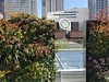 Living Wall (rocor) Tags: davidbrenner livingwall sfmoma