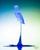 A Splash of Colour.  Blue Stalk. (it's a Boy) (Graham R Watson) Tags: highspeed waterdroplet waterart splashart splash