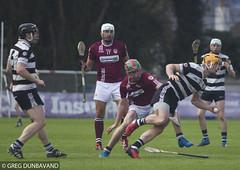 EG0D2687 (gregdunbavandsports) Tags: bishopstown midleton cork gaa hurling ireland sport paircuirinn munster bishoptowngaa corkgaa midletongaa