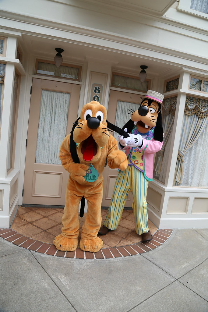 Pluto Has A Heart Love Him Back: The World's Best Photos Of Hkdisneyland And Pluto