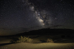 Night Sands (courtney_meier) Tags: california deathvalley deathvalleynationalpark landscape mesquitedunes milkyway nationalpark panamintmountains usnationalpark desert dunes galaxy lowlevellighting mountains night nightscape noflash nocturnal sand sanddunes creosotebush stars