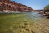 Grand Canyon Starts Here (Ken Krach Photography) Tags: coloradoriver grandcanyonnationalpark
