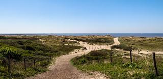 Walking through the dunes