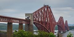 Flying Scotsman 20/05/2018 (jasty78) Tags: theflyingscotsman flyingscotsman 60103 steam train bridge forthrailbridge forthbridge railway scotland sigma350mmf14 nikond7200 fife