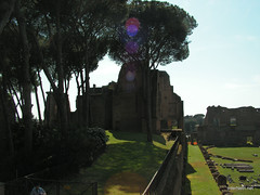 Пагорб Палатин, Рим, Італія InterNetri Italy 31