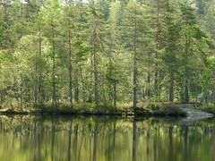 Lake Iso Majaslampi (Nuuksio national park, Espoo, 20180520) (RainoL) Tags: crainolampinen 2018 201805 20180520 esbo espoo finland geo:lat=6031960400 geo:lon=2459234100 geotagged isomajaslampi lake landscape may mirrorcalm nouxnationalpark nuuksionationalpark nuuksionkansallispuisto nyland p900 reflection spring uusimaa waterscape velskola vällskog fin