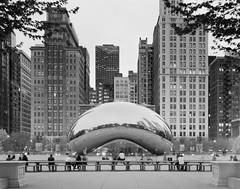 Barren Cloud Gate.jpg (Milosh Kosanovich) Tags: cloudgate 150mmcaltarii fujimicrofine11 4x5viewcamera zonevifieldcamera bean overcast millenniumpark longexposure epsonv750pro silverfast8 miloshkosanovich chicago chicagophotographicart chicagophotoart fujifilmacros100 chicagophotographicartscom mickchgo