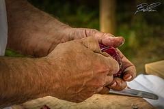 Preparazione (boscoloaaron1) Tags: cipolla onion mani hands hand uomo man mr signore cuoco cook medievale medioevale medieval renaissance rinascimento cucinare mano reenactor historicalreenactment reenactment rievocatore rievocazione rievocazionestorica viverelastoria livinghistory tamron18200 nikon tamron nikond5300 d5300