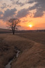 The calm after the storm (Jake Rogers Photo) Tags: jakerogersphotography jakerogers thesun orange midwestphotography midwest sunsetglow stormy springstorm stormclouds storm thunderstorm sunset ruralphotography iowaphotography iowa