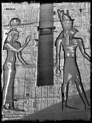 Dioses egipcios (mariadoloresacero) Tags: sonyilca68 reliefs égyptien égyptienne egypt egipto egypte gods egyptien dieux d'egypte egipcios dioses jeroglíficos relieve
