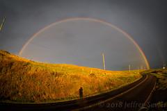 HI_0286.jpg (jsevier14) Tags: facebookcomjeffreysevier jeffreysevierjeffreyseviernet hawaii jeffreyseviernet flickrcomphotosjeffsevier jeffreysevier waimea unitedstates us