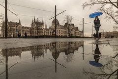 IMG_02342 (maro310) Tags: 2018 365project 70d blue budapest building canon city houseofparliament hungary lipotvaros magyarorszag orszaghaz outdoor parlament parliament people puddle reflection sightseeing sky spiegelung streetphotography tel tocsa tukrozodes umbrella unesco urban varosnezes winter water 500v20f