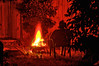 Camp Fire (Dennisbon) Tags: dennisbon canon eos 7d melbourne australia night fire camping outdoor oneperson timeexposure warmth