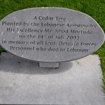 ARBOUR HILL [CEMETERY, PRISON AND CHURCH]-138952 thumbnail