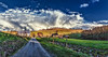IMG_7887-89Ptzl1scTBbLGERk (ultravivid imaging) Tags: ultravividimaging ultra vivid imaging ultravivid colorful canon canon5dm2 clouds sunsetclouds stormclouds farm fields barn house homestead rural road sky scenic landscape evening lateafternoon spring vista pennsylvania pa panoramic painterly