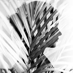 PHSQUAT2879011 (newmandrew_online) Tags: doubleexposition multiexposure filmisnotdead film ishootfilm bw svema blackandwhite 6x6 filmphotografy 120mm film120 mamiya mamiyac220 face portrait пленка мультиэкспозиция minsk belarus