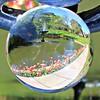 Through the Crystal Ball (ttelyob) Tags: pashley pashleymanor garden tulips picmonkey ball globe crystalball fountain