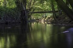 Down the stream (Theo Bauhuis) Tags: beek bocholt bos licht lichtval water flow stream light forest germany nrw